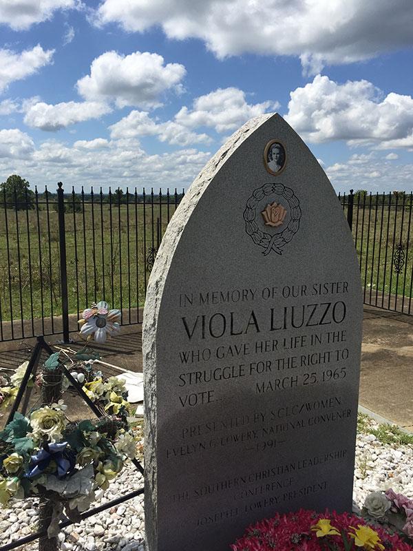 0418_viola